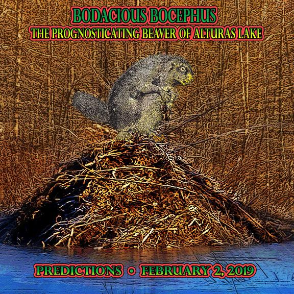 Beaver Predictions